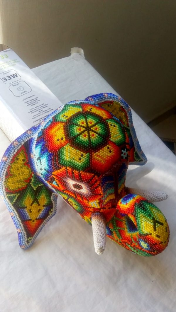 Cabeza de elefante